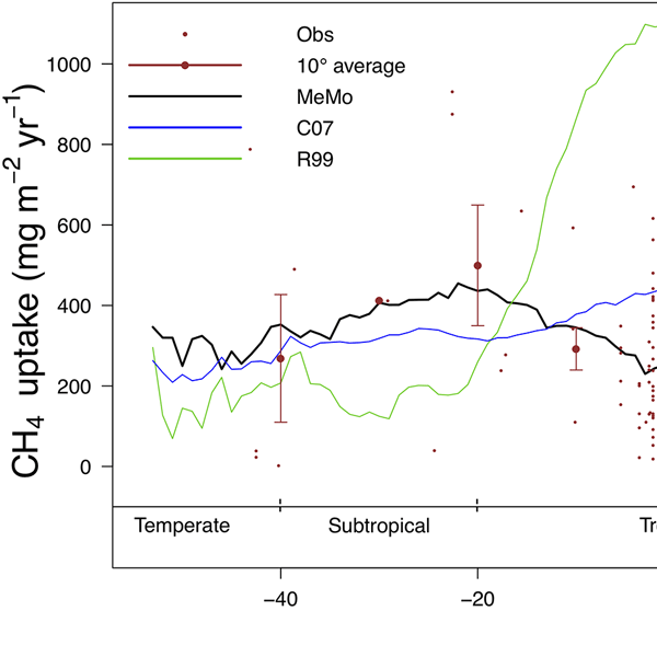 Gmd Relations Quantifying The Model Structural Error In Carbon