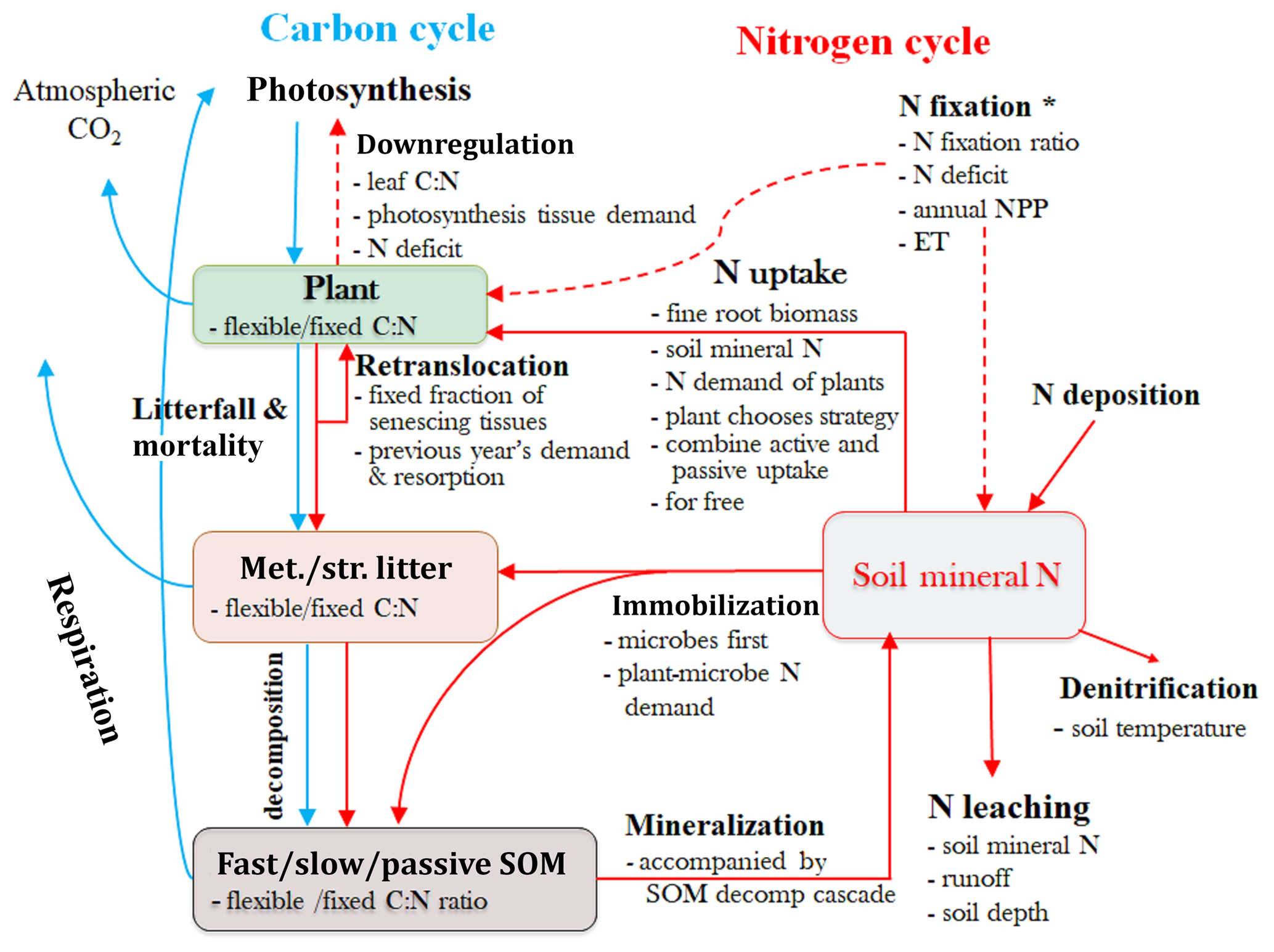 GMD - Carbon–nitrogen coupling under three schemes of model
