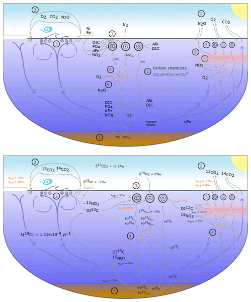 GMD - Ocean carbon and nitrogen isotopes in CSIRO Mk3L-COAL