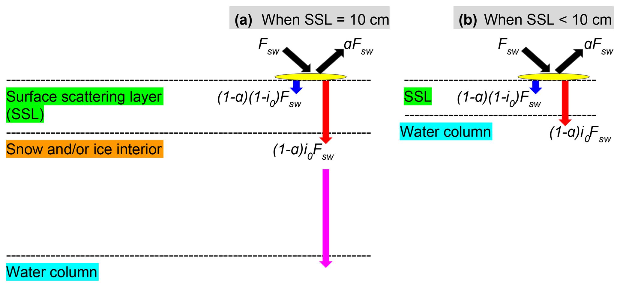 GMD - CSIB v1 (Canadian Sea-ice Biogeochemistry): a sea-ice