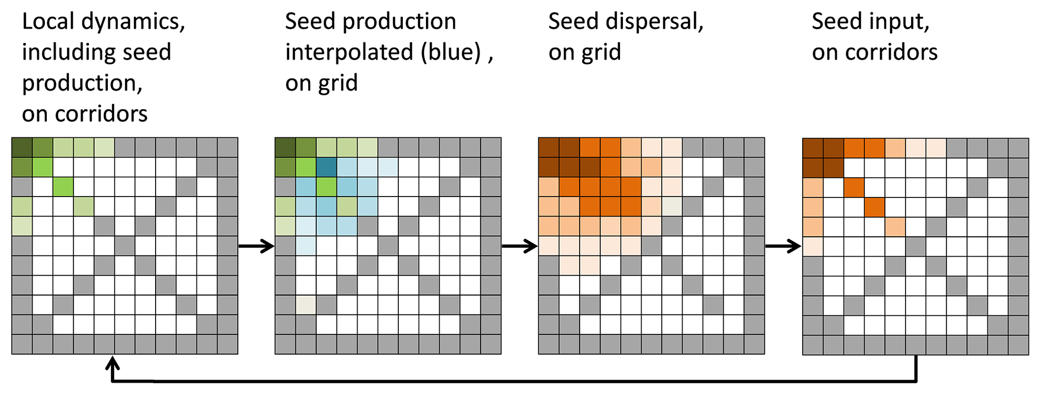GMD - LPJ-GM 1 0: simulating migration efficiently in a dynamic